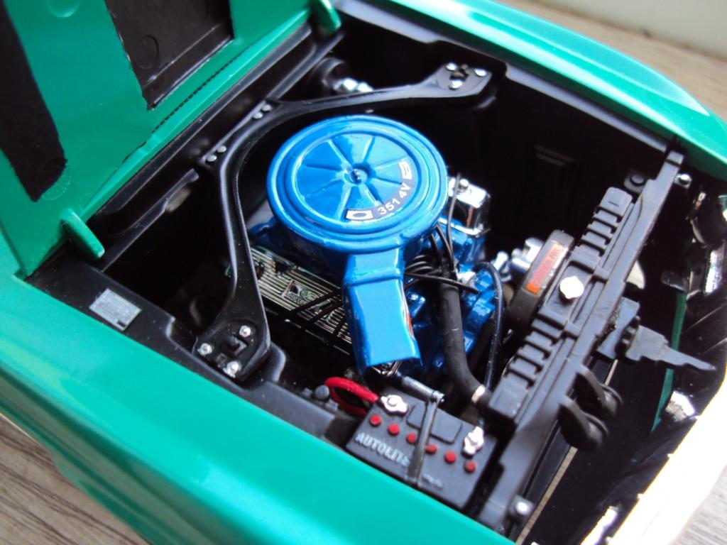 Mustang Mach 1 1970 Dsc05053