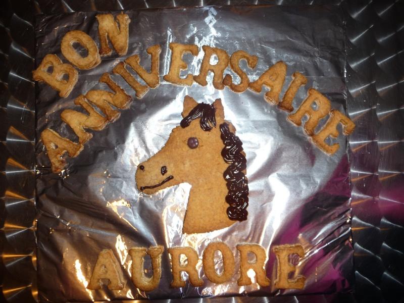 cheval, zèbre et licorne - Page 4 P1070610