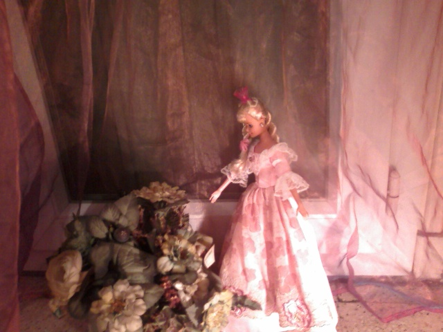 Ma Collection de Princesses Barbie Photo020