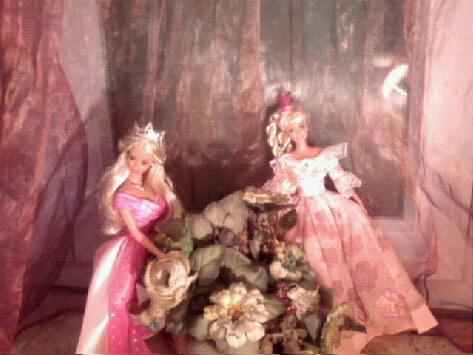 Ma Collection de Princesses Barbie Photo021