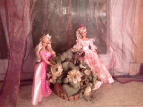 Ma Collection de Princesses Barbie Photo022