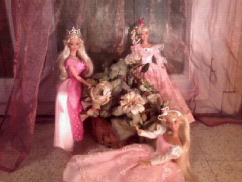 Ma Collection de Princesses Barbie Photo024