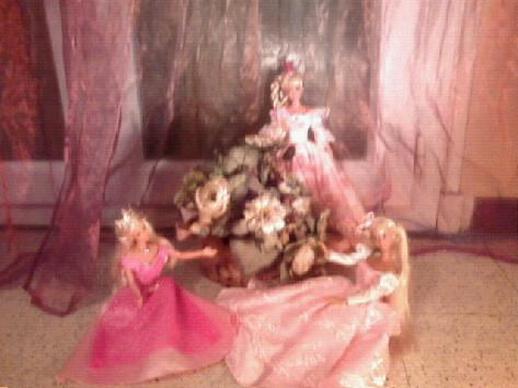 Ma Collection de Princesses Barbie Photo026