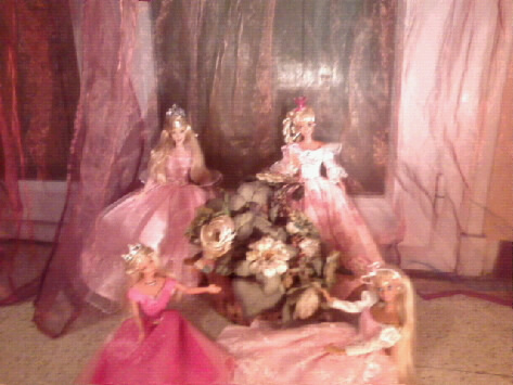 Ma Collection de Princesses Barbie Photo028