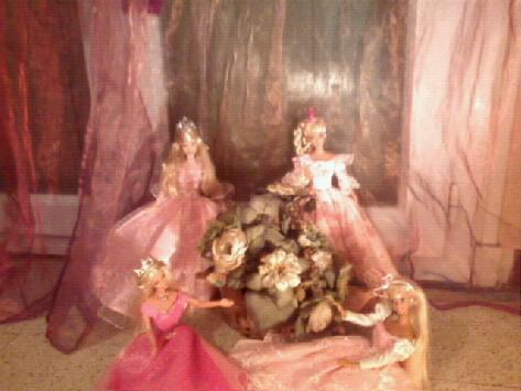 Ma Collection de Princesses Barbie Photo029