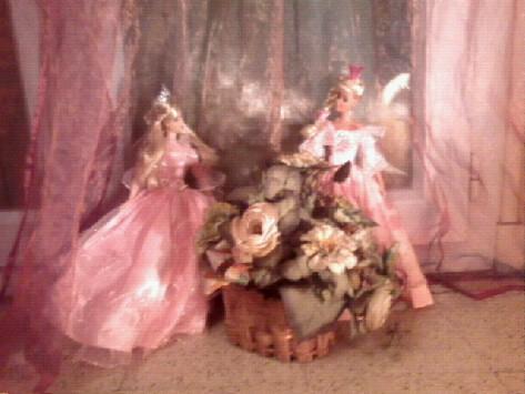 Ma Collection de Princesses Barbie Photo031