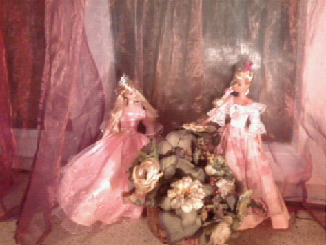 Ma Collection de Princesses Barbie Photo033