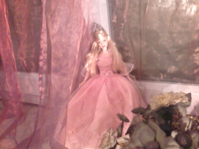 Ma Collection de Princesses Barbie Photo036
