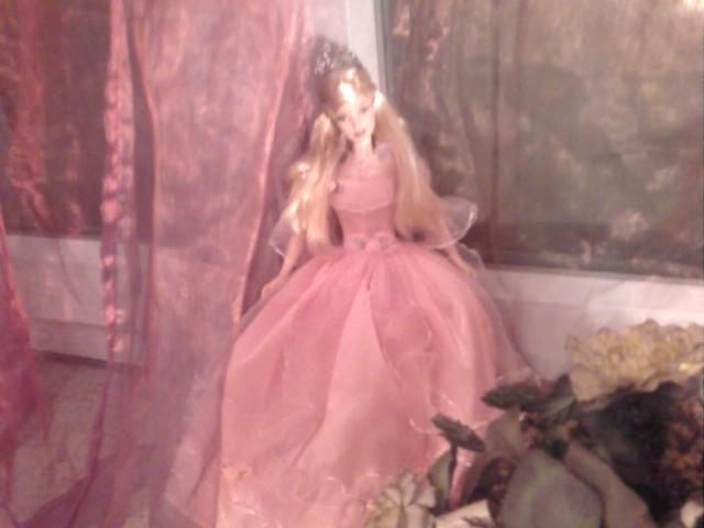 Ma Collection de Princesses Barbie Photo037