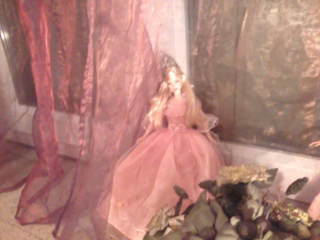 Ma Collection de Princesses Barbie Photo038