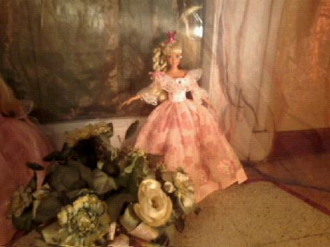 Ma Collection de Princesses Barbie Photo040