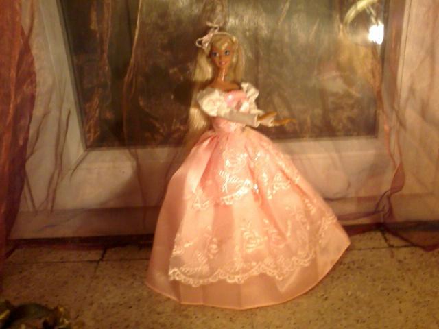 Ma Collection de Princesses Barbie Photo042