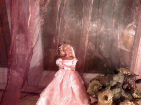 Ma Collection de Princesses Barbie Photo044