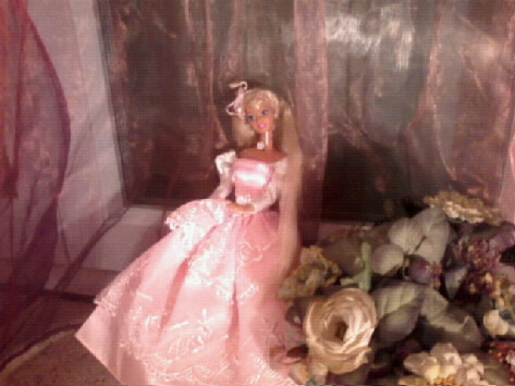 Ma Collection de Princesses Barbie Photo045