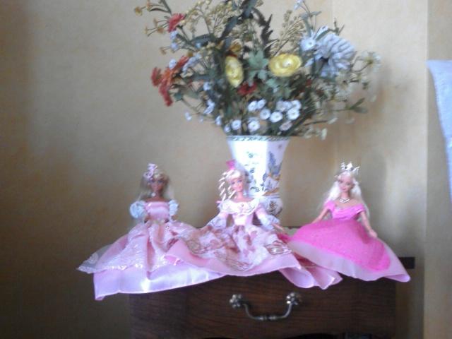 Ma Collection de Princesses Barbie Photo148