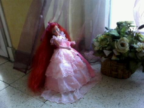 Ma collection des princesses Disney Photo157