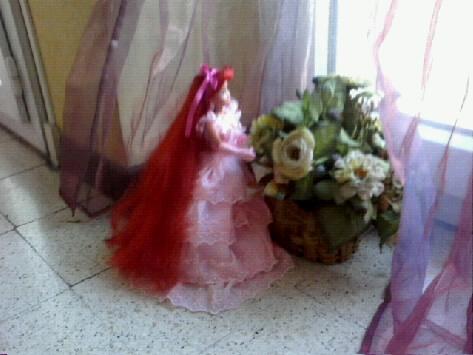 Ma collection des princesses Disney Photo158