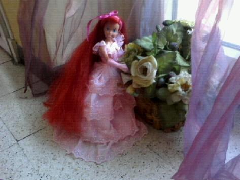 Ma collection des princesses Disney Photo160