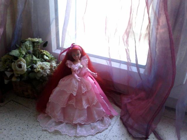 Ma collection des princesses Disney Photo161