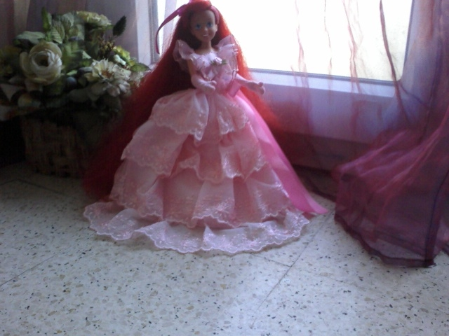 Ma collection des princesses Disney Photo168