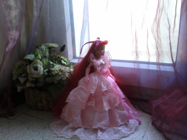 Ma collection des princesses Disney Photo170