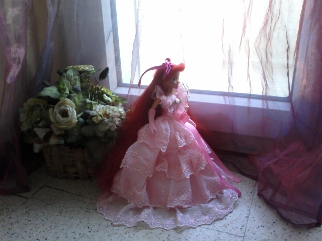 Ma collection des princesses Disney Photo173
