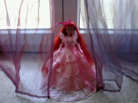Ma collection des princesses Disney Photo175