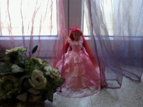 Ma collection des princesses Disney Photo176
