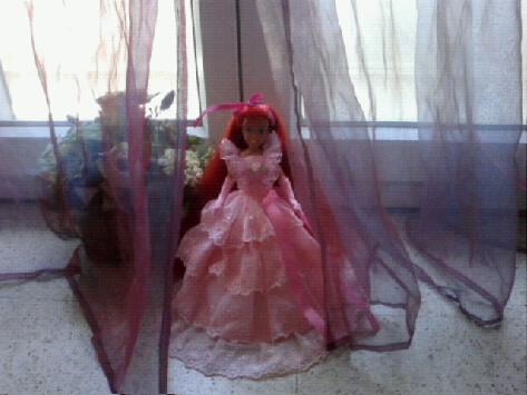 Ma collection des princesses Disney Photo177