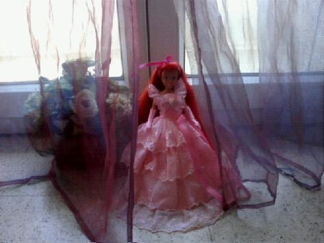Ma collection des princesses Disney Photo178