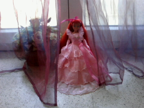 Ma collection des princesses Disney Photo180