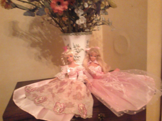 Ma Collection de Princesses Barbie Photo199