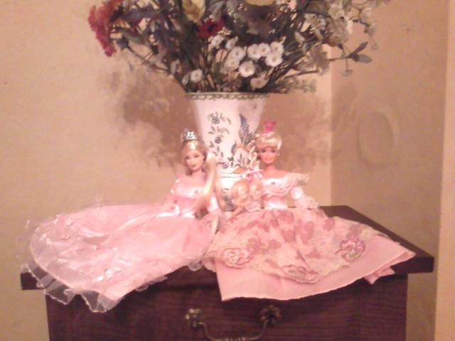 Ma Collection de Princesses Barbie Photo203