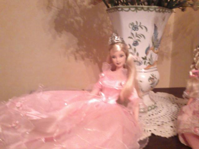 Ma Collection de Princesses Barbie Photo204