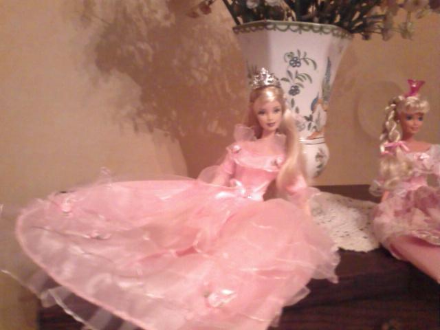 Ma Collection de Princesses Barbie Photo206