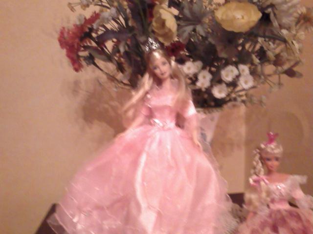 Ma Collection de Princesses Barbie Photo208