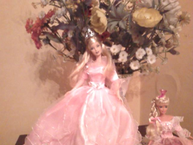 Ma Collection de Princesses Barbie Photo209