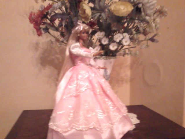 Ma Collection de Princesses Barbie Photo213