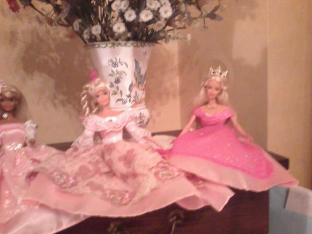 Ma Collection de Princesses Barbie Photo218
