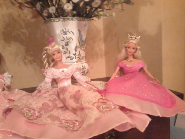 Ma Collection de Princesses Barbie Photo219