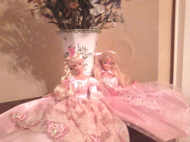 Ma Collection de Princesses Barbie Photo222