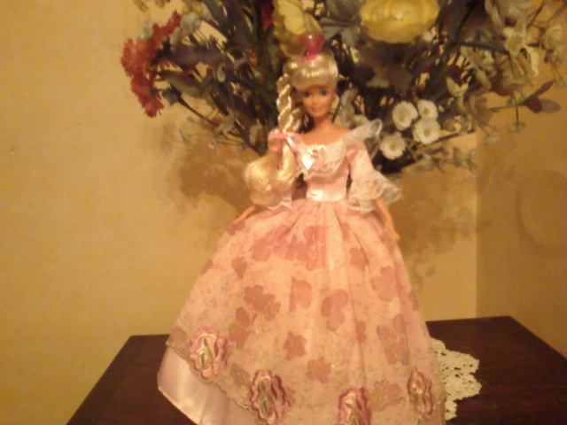 Ma Collection de Princesses Barbie Photo225