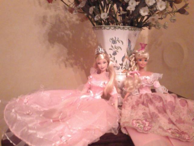 Ma Collection de Princesses Barbie Photo226