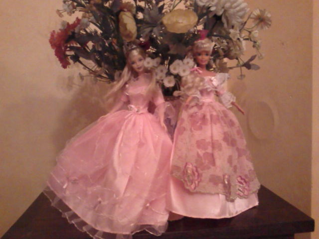 Ma Collection de Princesses Barbie Photo228