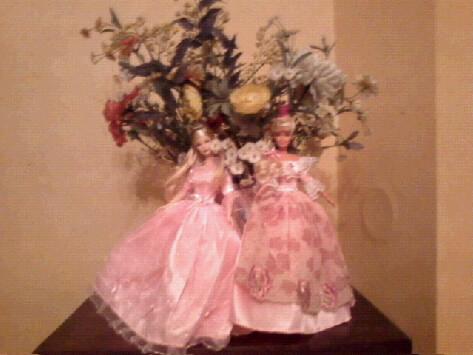Ma Collection de Princesses Barbie Photo229