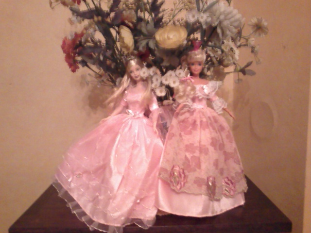 Ma Collection de Princesses Barbie Photo232