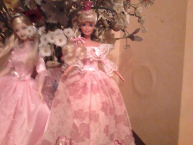 Ma Collection de Princesses Barbie Photo233