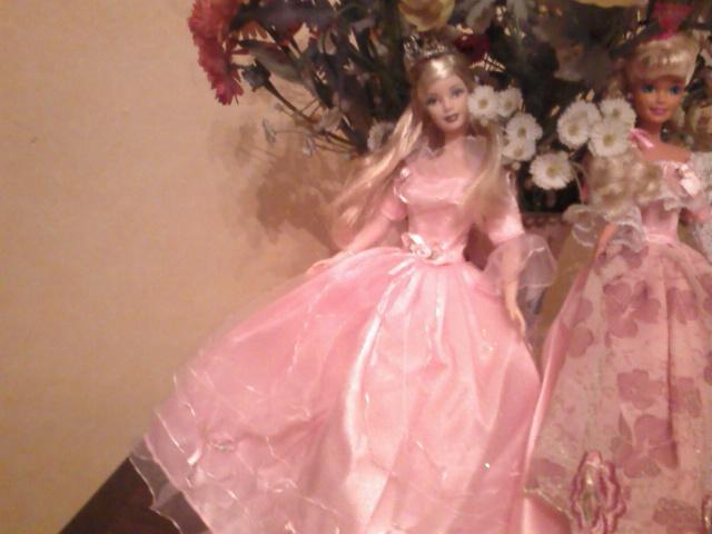 Ma Collection de Princesses Barbie Photo234