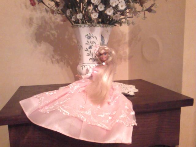 Ma Collection de Princesses Barbie Photo239