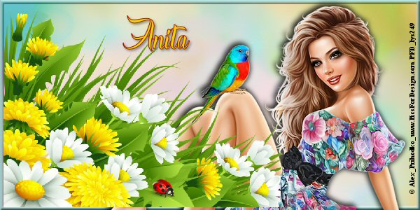 """récompense : Anita- 4000 pts """"Défis à thèmes """" _0_60012"""